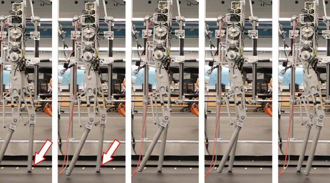 הדגמה של הליכה דינמית של רובוט דו-רגלי על משטחים חלקים
